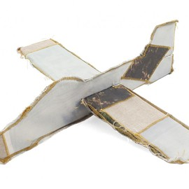 Amber Young, Benny Gold - AMBER YOUNG glider plane