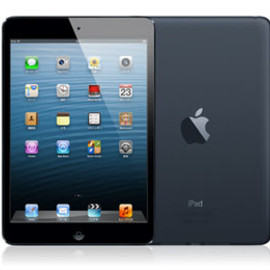 Apple - iPad mini 16G wifi