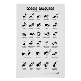 Lili Chin - Doggie Language