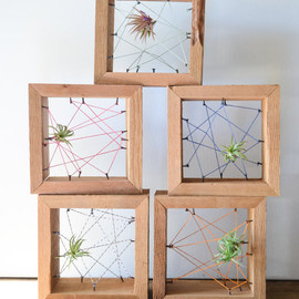Air plant personal Rustic Reclaimed Recycled salvaged wood holders. Vase, wall decor, geometric, terrarium wedding birthday