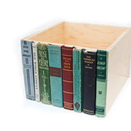 Modern Library Storage Bin, Stylish Storage for your much-loved clutter