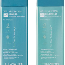 Giovanni - Wellness shampoo/conditioner