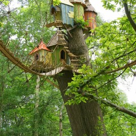 Norfolk, England - Tree House