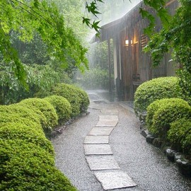 Kyoto - Rainy Day ~ Kyoto, Japan