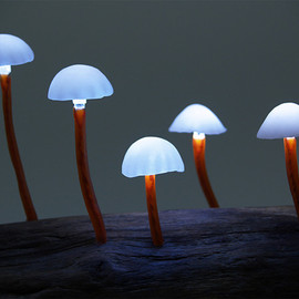 高野幸雄 - LED Mushroom Lights