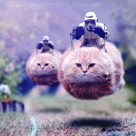 STAR WARS - Speeder Bike
