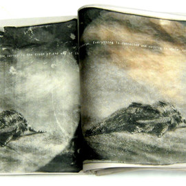 mike + doug starn - Catalogues for Gravity of Light