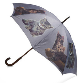 It's Raining Cats Umbrella