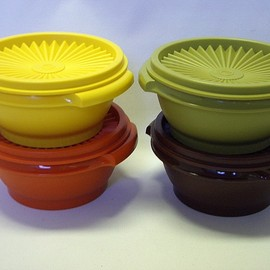 Vintage Hervest color picnic set