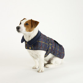 RALPH LAUREN - Coat for dog