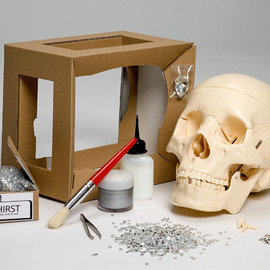 iartist - iHIRST, Recreate Damien Hirst's Love of God Kit