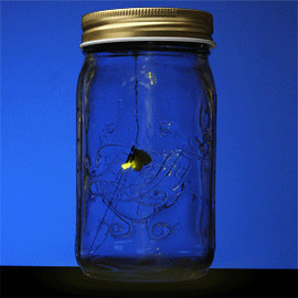 ThinkGeek - Electronic Firefly in a Jar