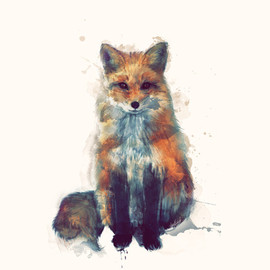 Amy Hamilton - Fox Art Print