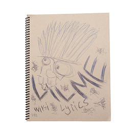 WIKI - LIL ME LYRIC BOOK