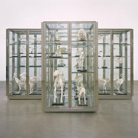 Damien Hirst - Where Are We Going? Where Do We Come From? Is There A Reason?