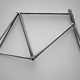 detroit bicycle company - Brushed steel frame with polished stainless steel lugs and brass head badge/chrome fork.