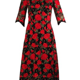 DOLCE&GABBANA - Rose-embroidered lace dress