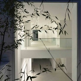 Apool Architects - Studiorundholz, Townhouse Oberwall, Berlin