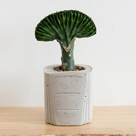 FIG+YARROW Classics - Cement OJ Bottle Planter