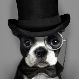 Halloween Winston Churchill Costume.