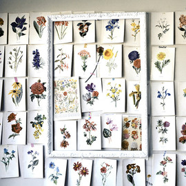 Flower pages on the wall.
