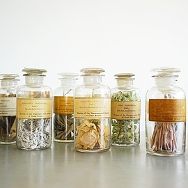 Museum of the Pharmaceutical Society of Great Britain - BOTANICAL SPECIMEN JAR