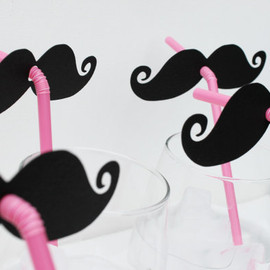 Little Retreats - Mustache and Pink Straw