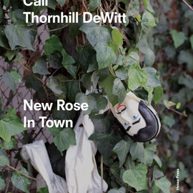 Cali Thornhill DeWitt - New Rose In Town