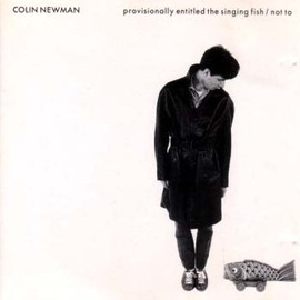 colin newman - provisionally entitled the singing fish