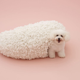 ARCHITECTURE FOR DOGS - 犬のための建築展 by 妹島和世 for ビションフリーゼ ©Hiroshi Yoda