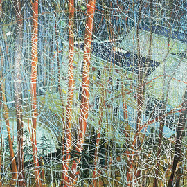 Peter Doig - The Architects Home In The Ravine