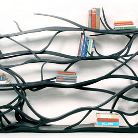 Chilean Born and Sebastian Errazuriz's  - 'metamorphosis' bookshelf