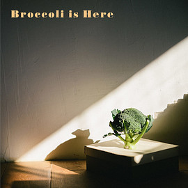 Orangeade - Broccoli is Here