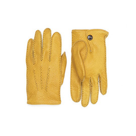 DENTS - Peccary Gloves