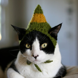 scooterKnits - Buddy the Elf Cat Hat