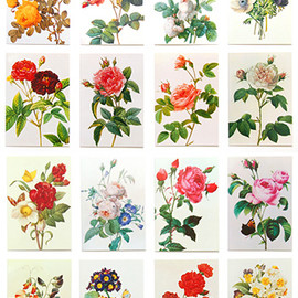 Anness Publishing - Redoute Flowers in Art Card Tower