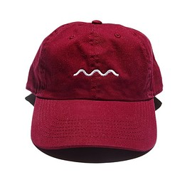 The Good Company - Wave Logo Hat (burgundy)