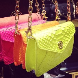 TORY BURCH - Tory Burch neon color clutches