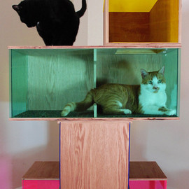 Sam Roeck - Contemporary Art Sculpture for Cats #2, 2013