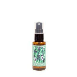 BULLPEN - PALOS〈Abstract Plants〉Hand And Mask Spray