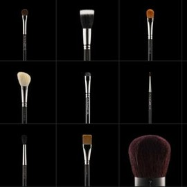 Mac Cosmetics - Brushes