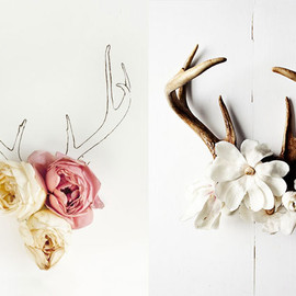 antler and flowers by kari herer