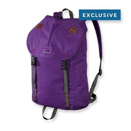 Patagonia - Patagonia Special Edition Summit Pack