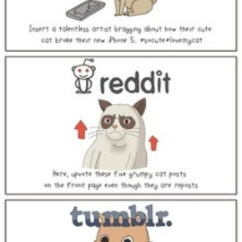 According to Devin - State of Internet: Cats!