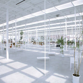 Junya Ishigami - Institute of Technology, Kanagawa