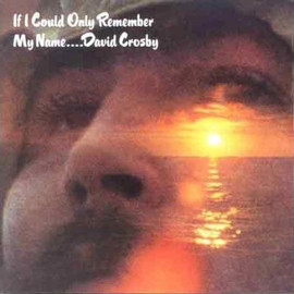 David Crosby - If I Could Only Remember
