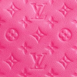 LOUIS VUITTON - monogram