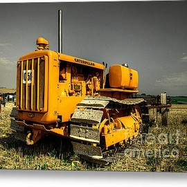 Fine Art America - The Crawler Acrylic Print By Rob Hawkins
