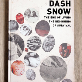 DASH SNOW - THE END OF BEGINNING OF SURVIVAL