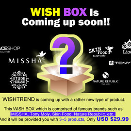 WISH BOX (No.4)